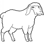 coloriage-a-imprimer-mouton-1-2975x4200-4845