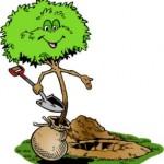 Plantation_pour_arbre_19122010_142753